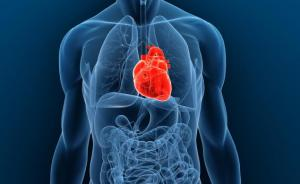 Tanda dan Gejala Ischaemic Heart Disease